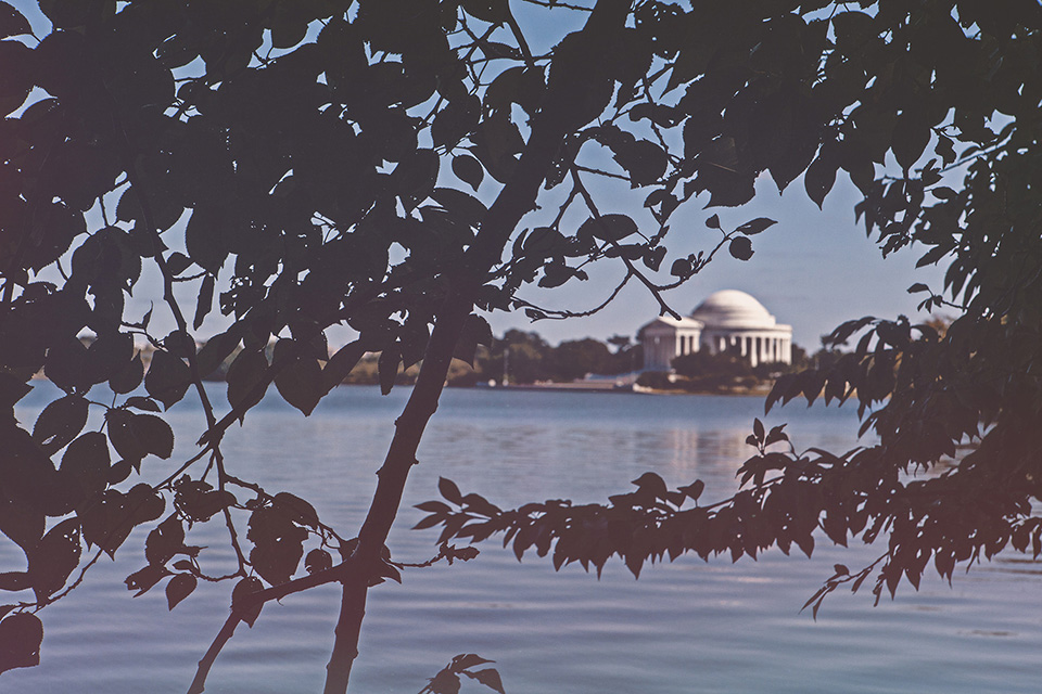 washington d.c. - tidal basin and thomas jefferson memorial